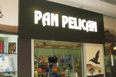 pan_pelican